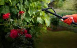 Sredstva za zaštitu bilja