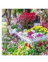 Zaštita cveća